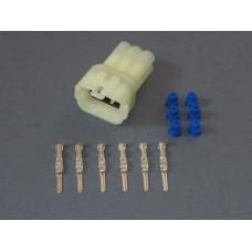 MT 6 Way Plug